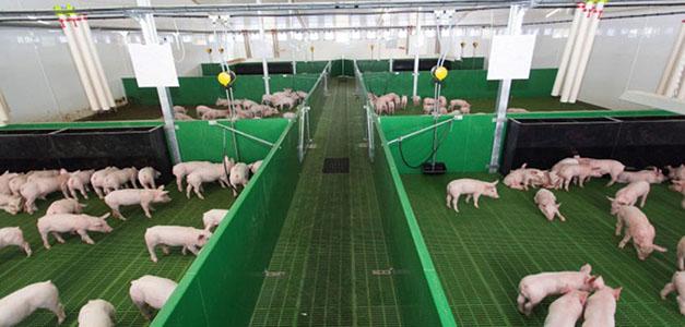Khu liên hợp sản xuất, chăn nuôi công nghệ cao Xuân Thiện Thanh Hoá